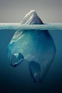 La lutte contre la pollution plastique